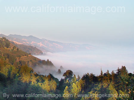 California image photography portfolio fog over the coast big sur
